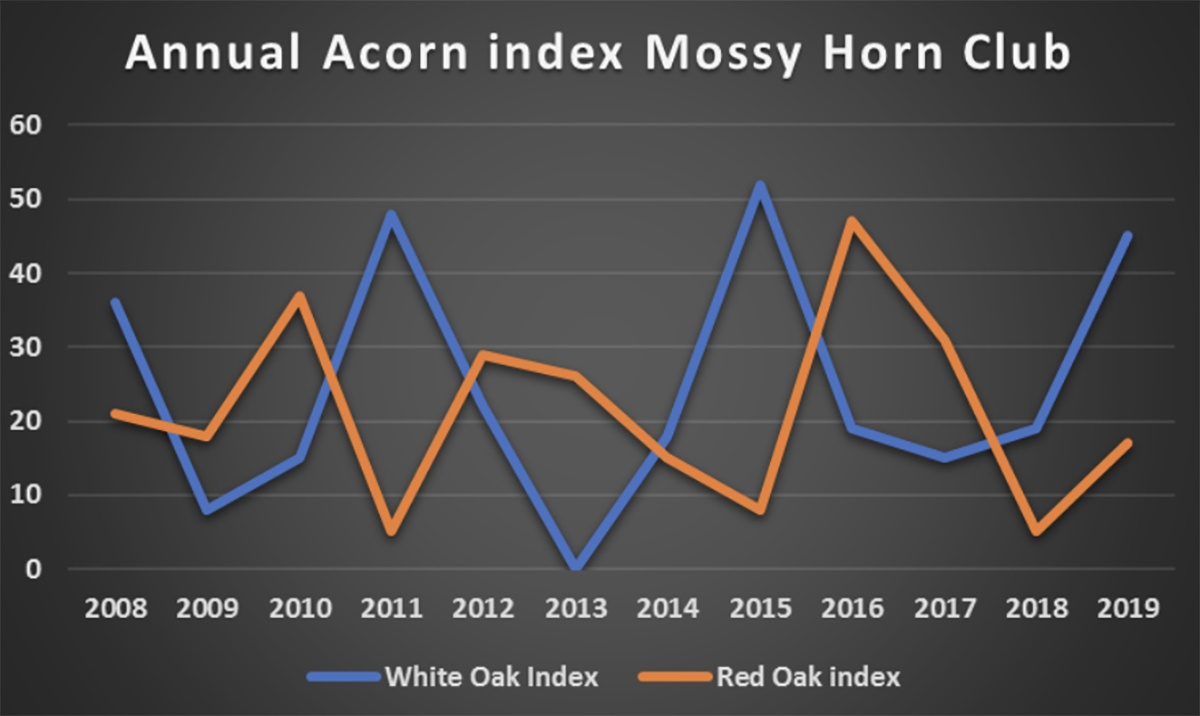 Acorn Crop index for Mossy Horn Club