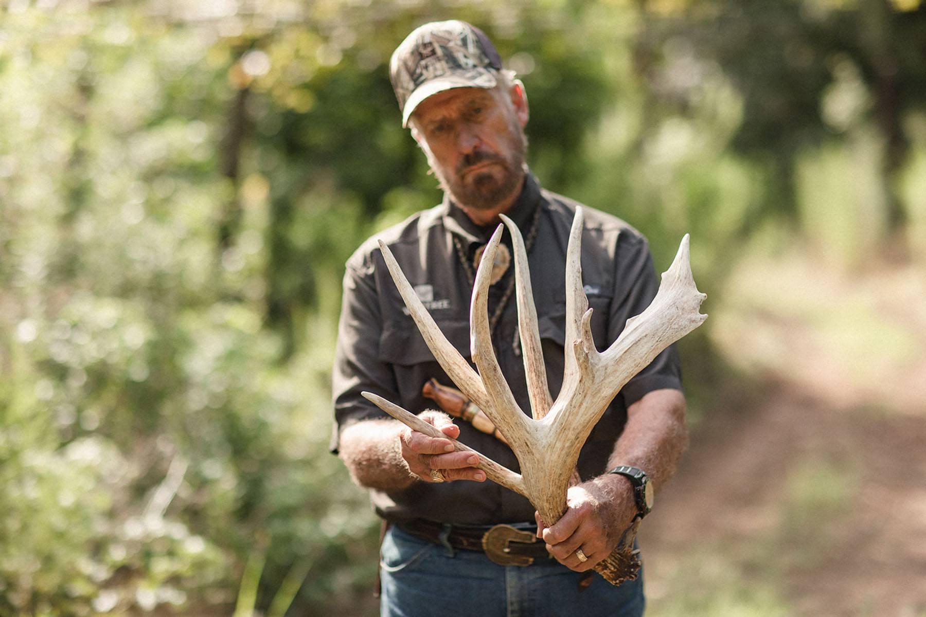 Inspecting antlers for deer health